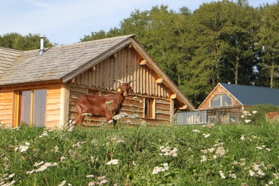 La ferme du Country Lodge