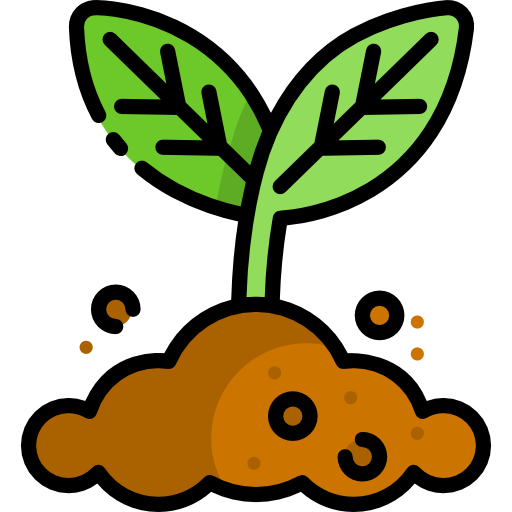 vegetation-plantes-foret